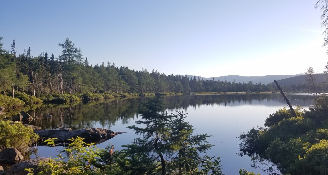 White Mountain Pond
